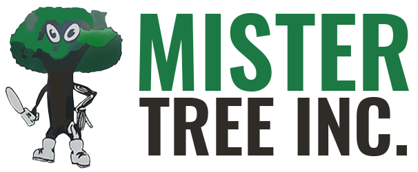 Mister Tree Inc. Logo